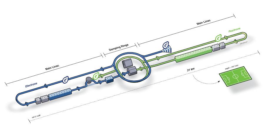 Схема Международного линейного коллайдера (изображение: ILC GDE)