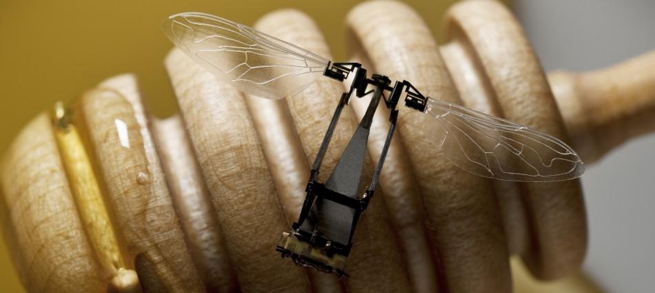 Один из вариантов RoboBee - из семейства сверхминиатюрных дронов, над которым работают в Гарвардском университете.