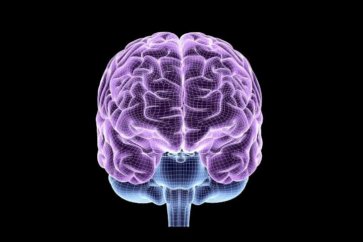 «Большие данные» как новая парадигма в моделировании мозга