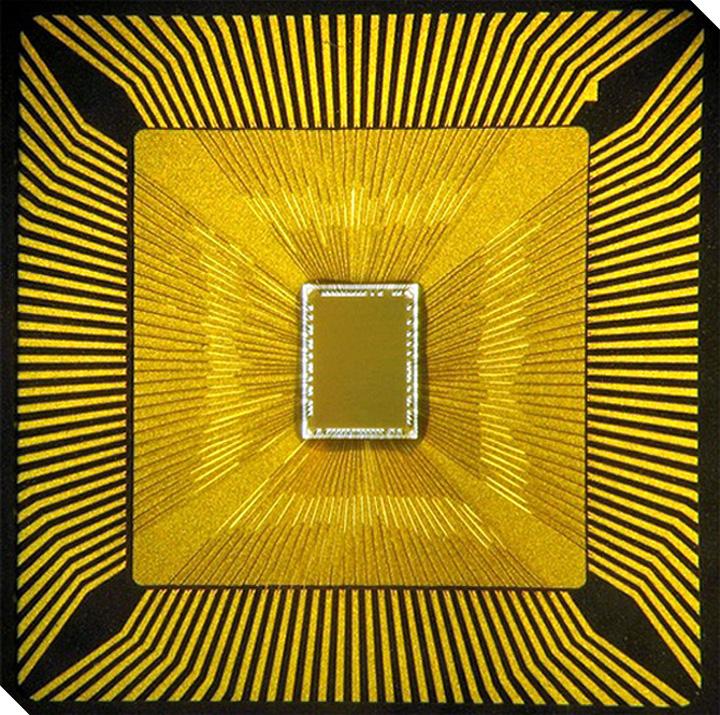 «Портрет» нейросинаптического чипа. (Фото DARPA.)