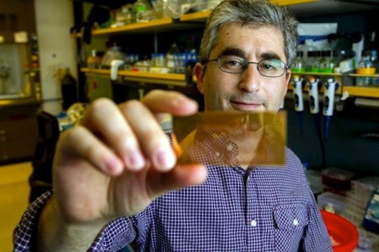 Доктор Брайан Фельдман держит в руке стеклянную пластину диагностического чипа, покрытую наночастицами золота (фото: med.stanford.edu).