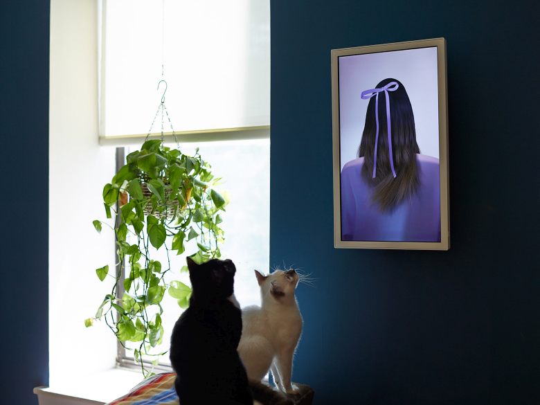Моноблок EO1 приобщит к искусству даже кошек (фото: electricobjects.com).