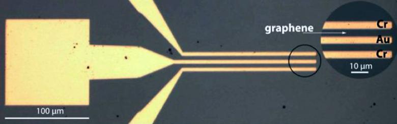 Прототип графенового детектора (изображение: Thomas Murphy).