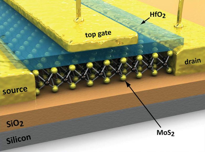 Полевой транзистор на основе дисульфида графена (изображение: uml.edu).