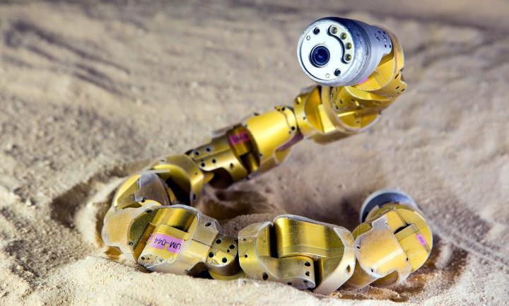 Робот-змея Elizabeth не смогла превзойти археологические достижения лорда Карнарвона…