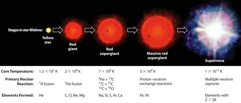 Термоядерный синтез элементов на  каждом этапе эволюции звезды (изображение: Bruce A. Averill).