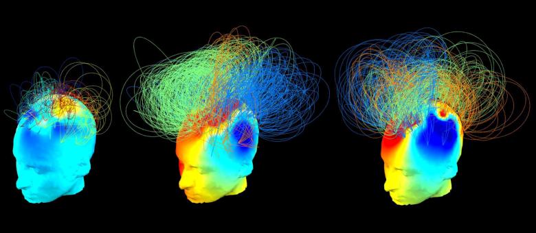 Изображение: Chennu et al. / PLoS Computational Biology
