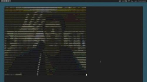 Энтузиасты Linux предложили использовать видеочат, воспроизводимый текстовыми строками.