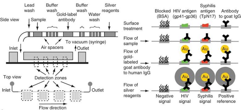 Принципиальная схема работы диагностической приставки mChip (изображение: Samuel K Sia et al.).