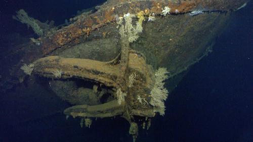 Пол Аллен, сооснователь Microsoft, готовится организовать Live-тур к останкам потопленного во Второй мировой войне линкора Мусаси серии «Ямато».