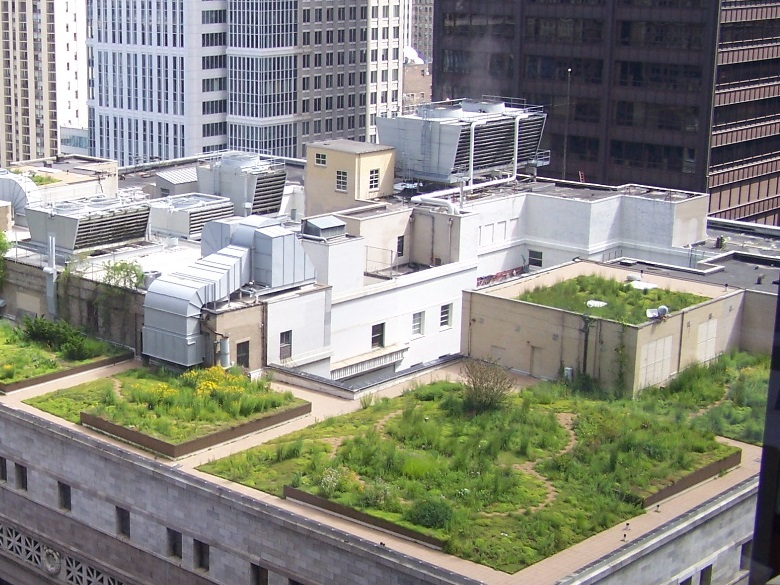 """Во Франции приняли закон о """"зеленых крышах"""""""