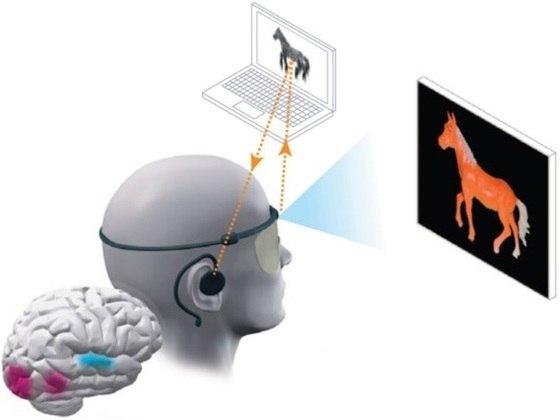 Система vOICe дает незрячему человеку суррогатное зрение, он сможет ориентироваться в помещении и самостоятельно передвигаться.