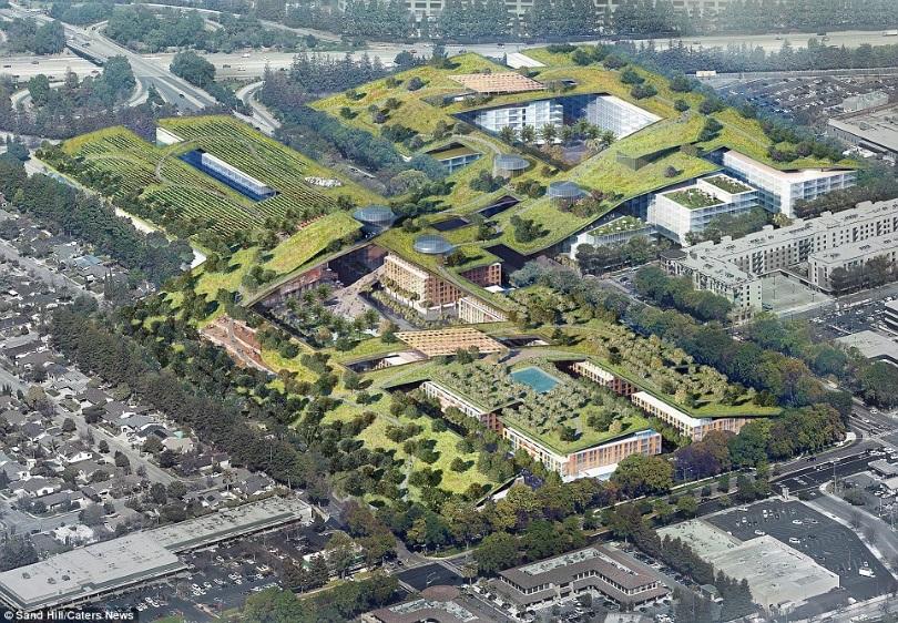 В Купертино построят офис-парк с уникальным озеленением крыш