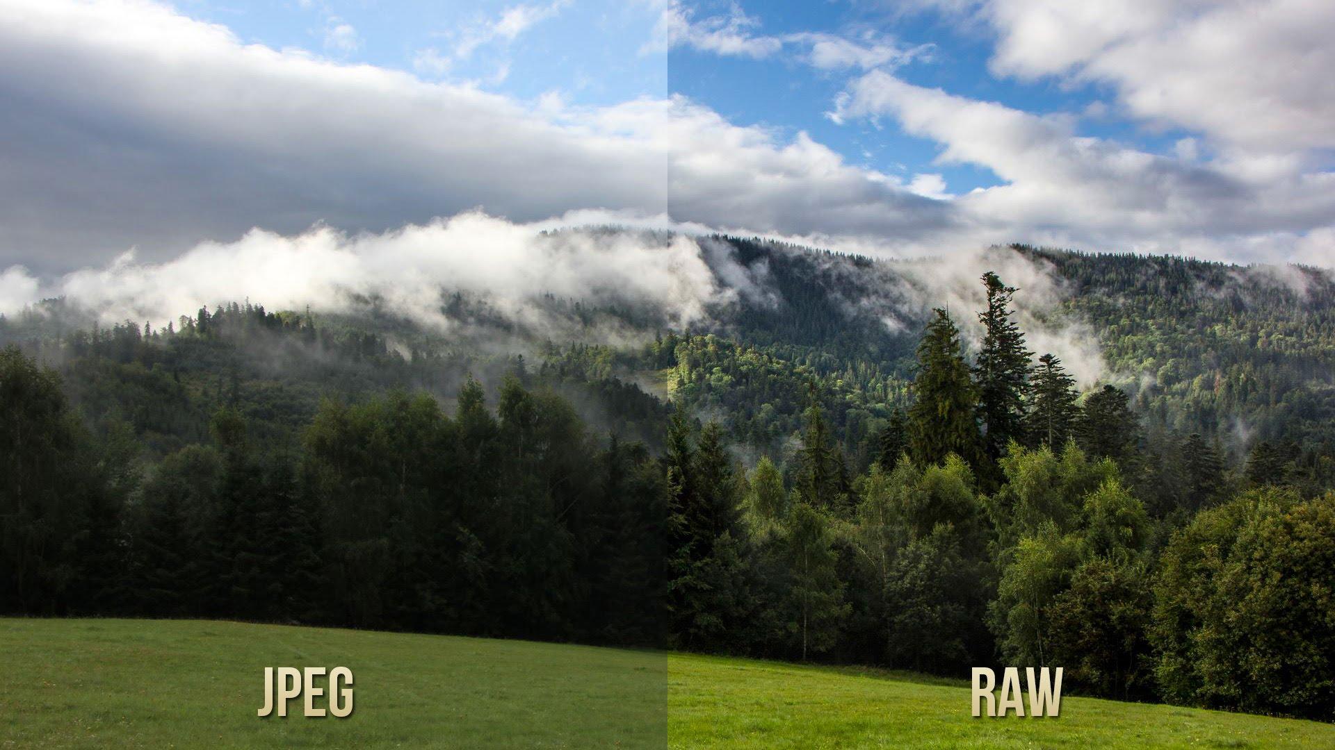На самом деле сравнивать RAW и JPEG напрямую некорректно: JPEG всегда выглядит одинаково, тогда как отображение RAW может варьироваться в зависимости от применённых в данный момент настроек. Тем не менее в таком сопоставлении есть смысл: JPEG без потерь уже не изменишь, тогда как RAW всегда можно отобразить лучше, поиграв с параметрами!