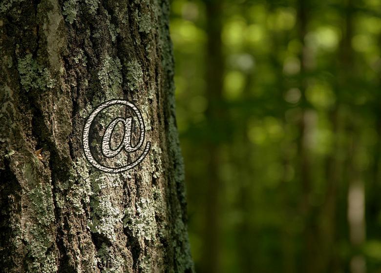 Tree_at