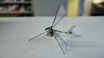 В России построят тяжелый орнитоптер.