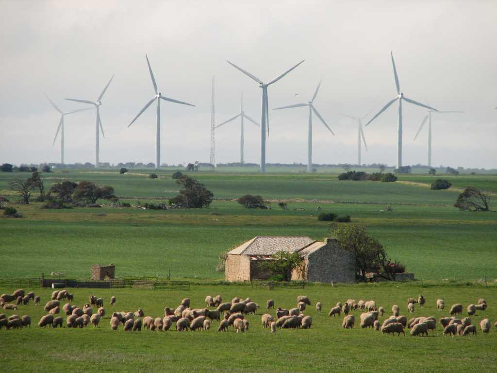 Каждый шестой киловатт-час в Австралии произведён из возобновляемых ресурсов. Правда, ветер и солнце пока уступают биомассе и гидроэнергетике, но именно на них будет сделан акцент в следующее десятилетие.