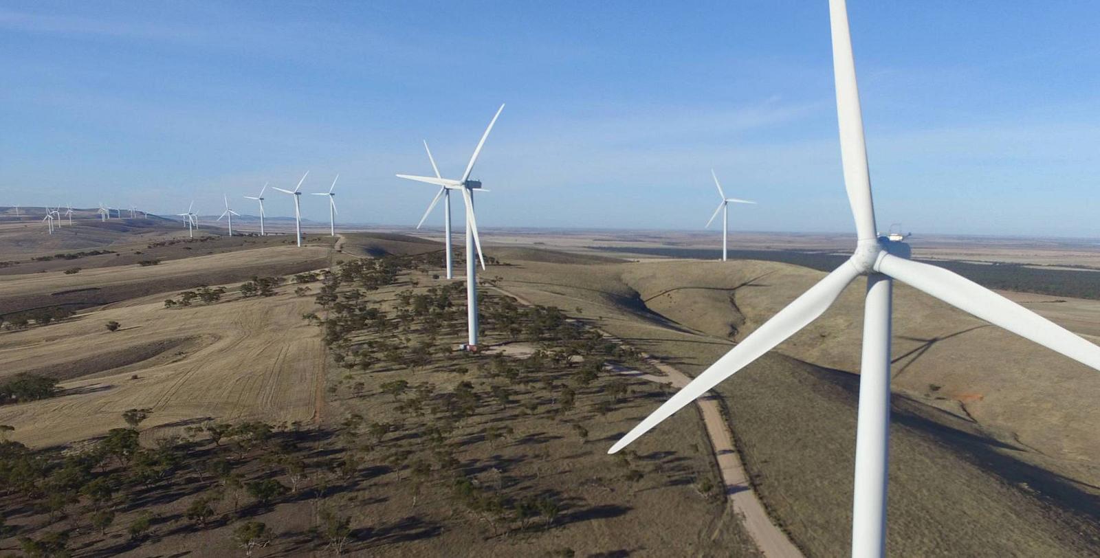 Каждый год установленная мощность ветряков на пятом континенте вырастает на треть — и Южная Австралия даёт половину этого прироста.
