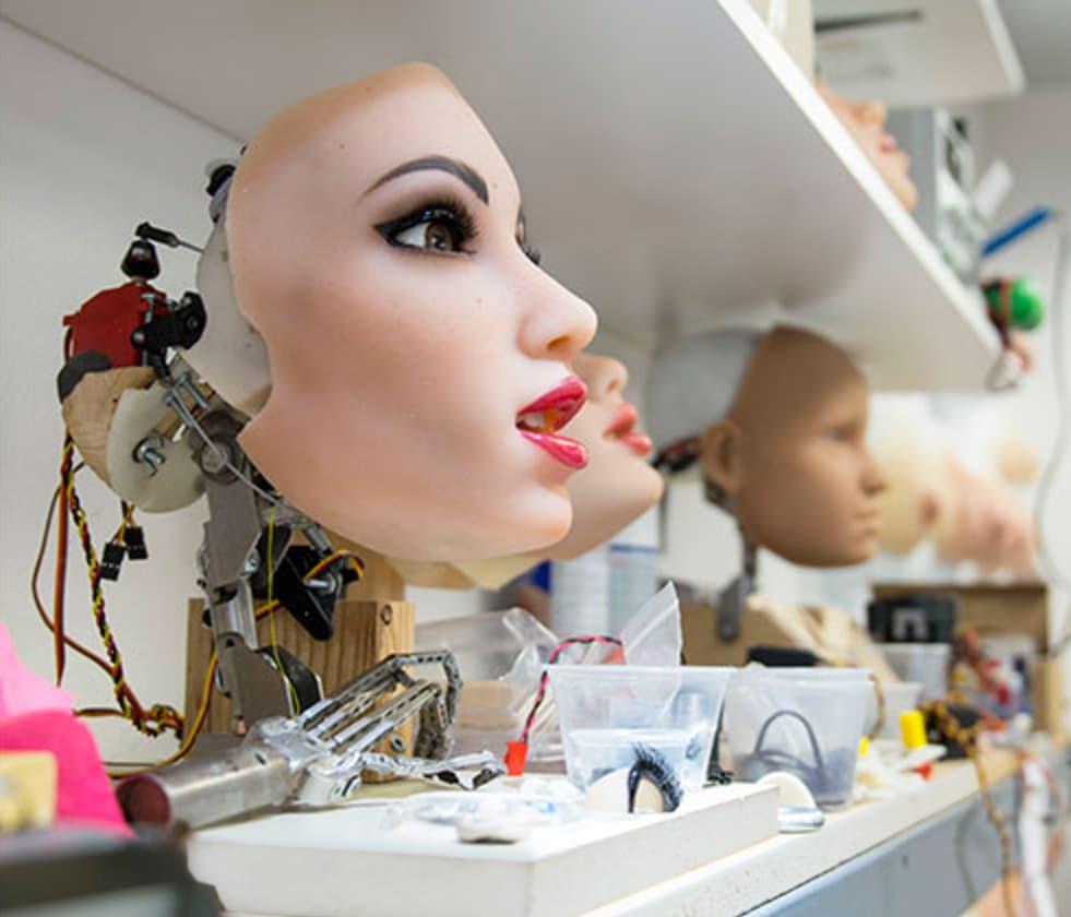 Секс-робот — антропоморфное устройство, построенное для сексуального удовлетворения