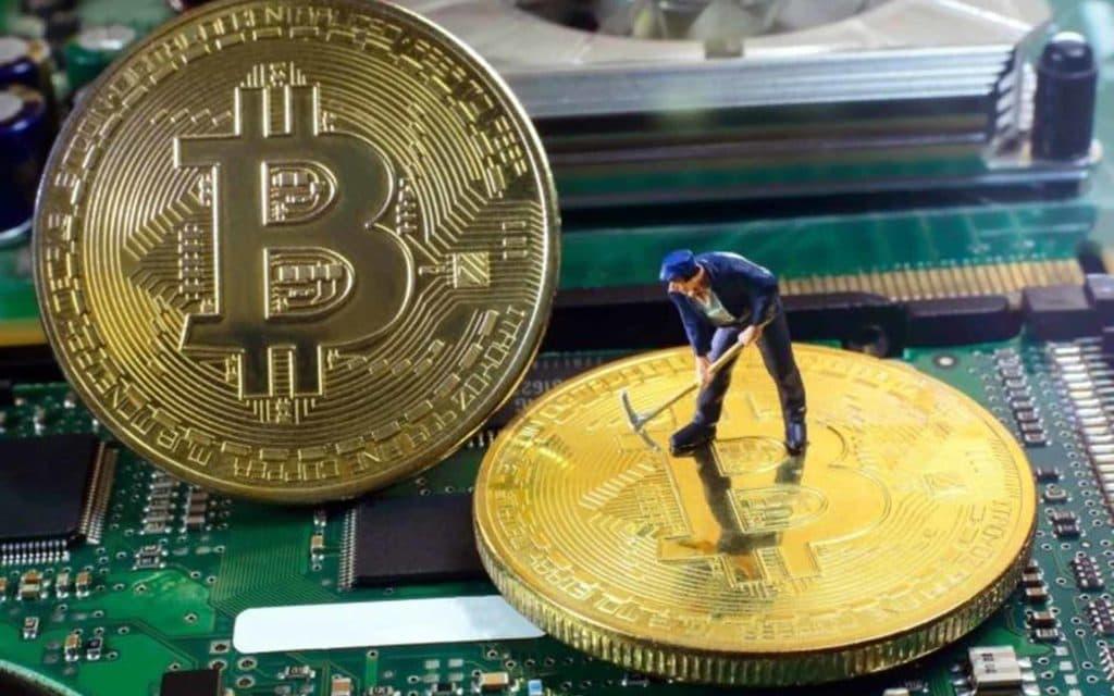 Владельцы видеокарт ASUS смогут добывать криптовалюты