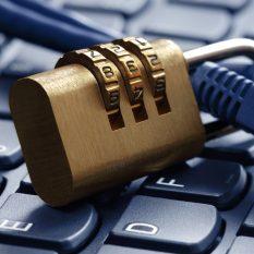 Великая российская стена: перспективы суверенного интернета