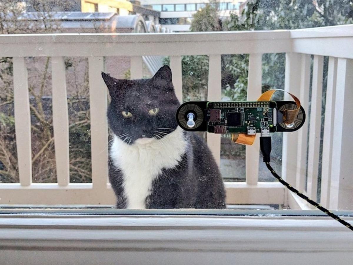 нейросеть так, чтобы она узнавала за окном его кота