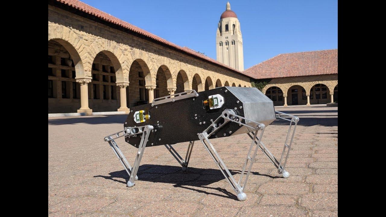 Doggo – разработанный студентами Стэнфорда робот-собака