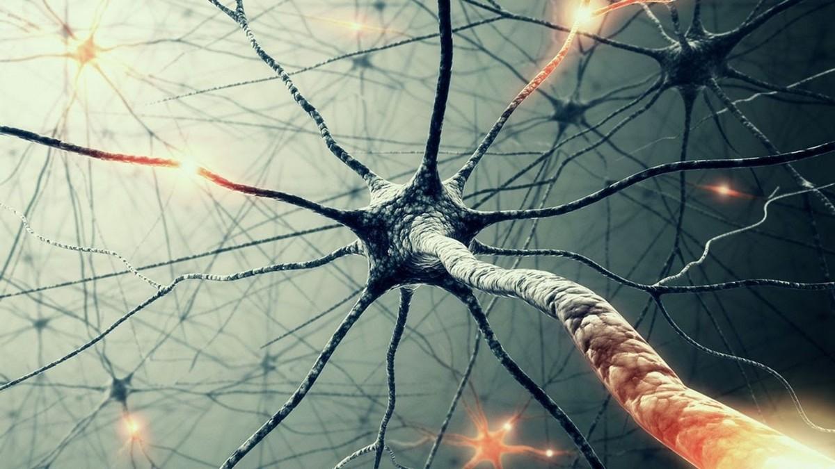 19 отличных бесплатные нейросетей