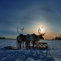 В Сибири будет создан туристический объект на базе блокчейна