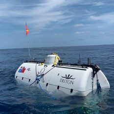Организуется публичная экспедиция на поиск Атлантиды