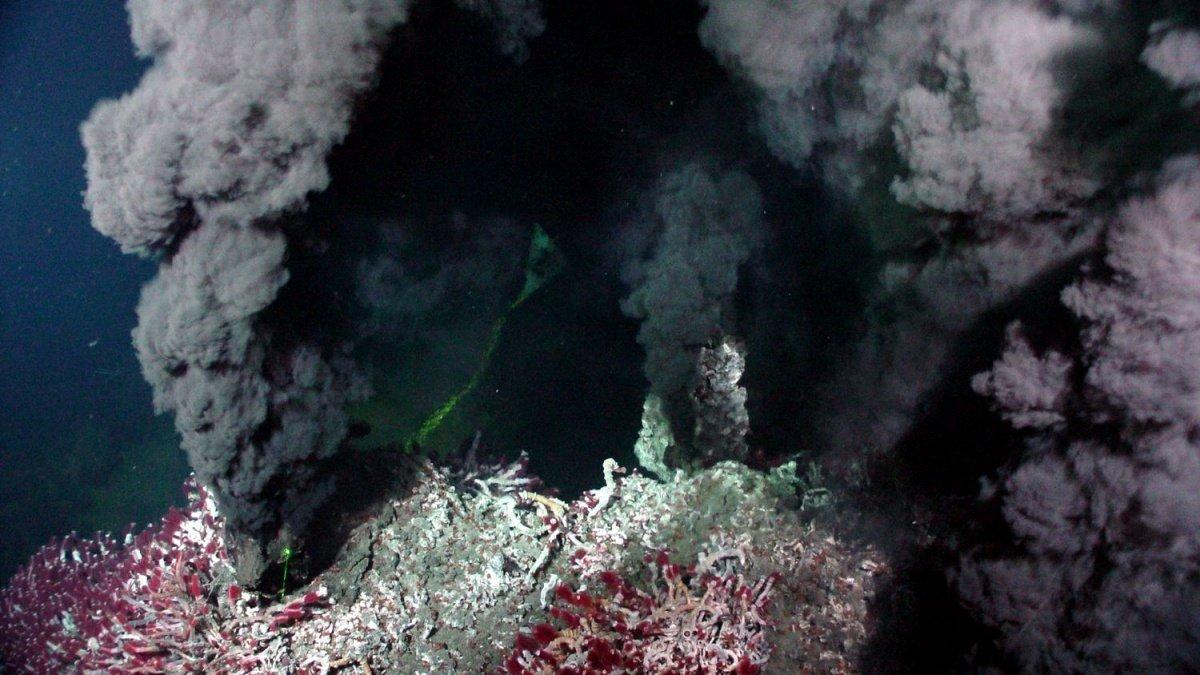 Исследование: глубоководные гидротермальные источники обладали идеальными условиями для возникновения жизни