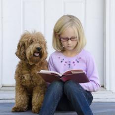 Ваша собака поможет ребенку учиться