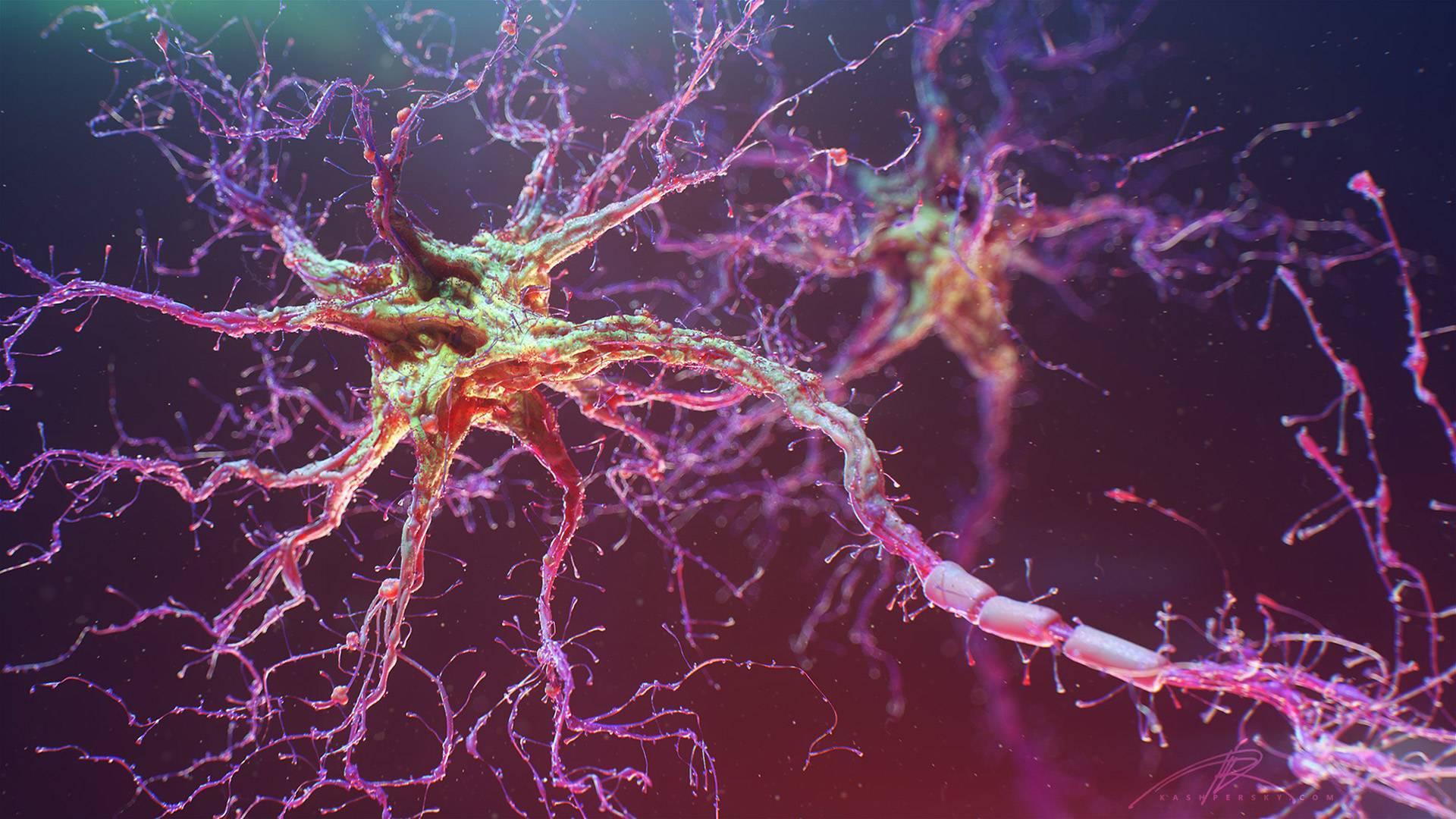 Искусственный интеллект может находить гены, ответственные за заболевания