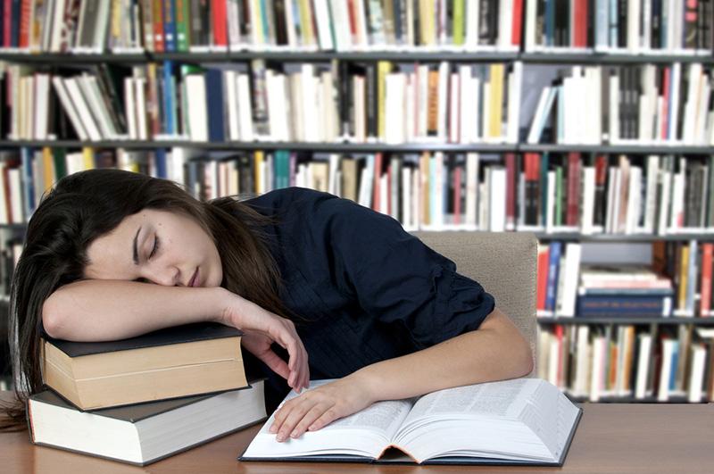 Аромат розы поможет обучаться во время сна