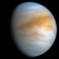 Новые исследования NASA будут связаны с поиском жизни на Венере и Тритоне