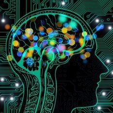 Может ли искусственный интеллект рассчитать, что с нами будет