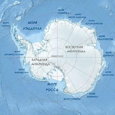 В Антарктике сформировалась новая экосистема