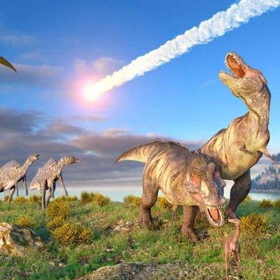 Чикшулубский астероид стал подтверждением гипотезы о вымирании динозавров