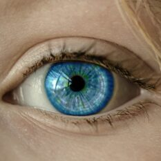 Ученые создали прибор для искусственного зрения